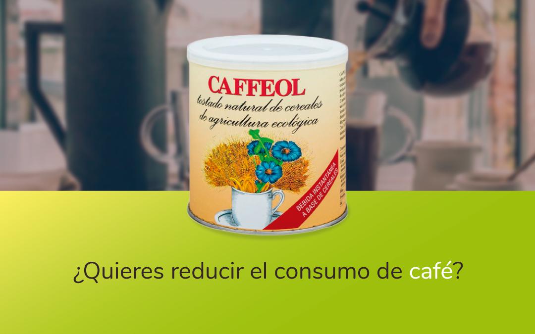 Sustituto del café achicoria soluble