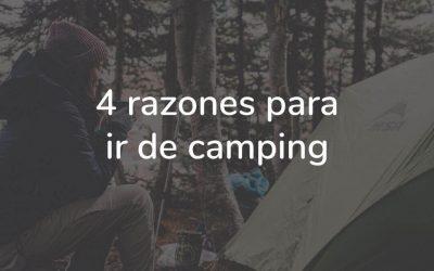 Camping, 4 razones por las que ir.